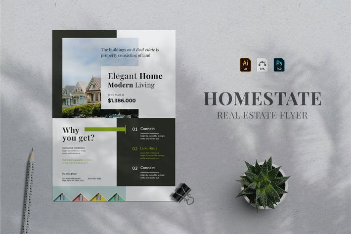 Thumbnail for Real Estate Flyer 09