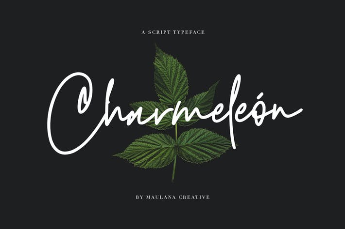 Thumbnail for Charmeleon Script Typeface