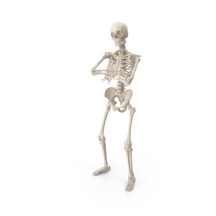 Skeleton B-Boy