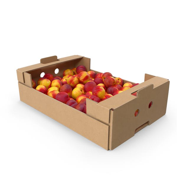 Cardboard Box of Nectarines
