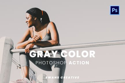 Gray Color Photoshop Action