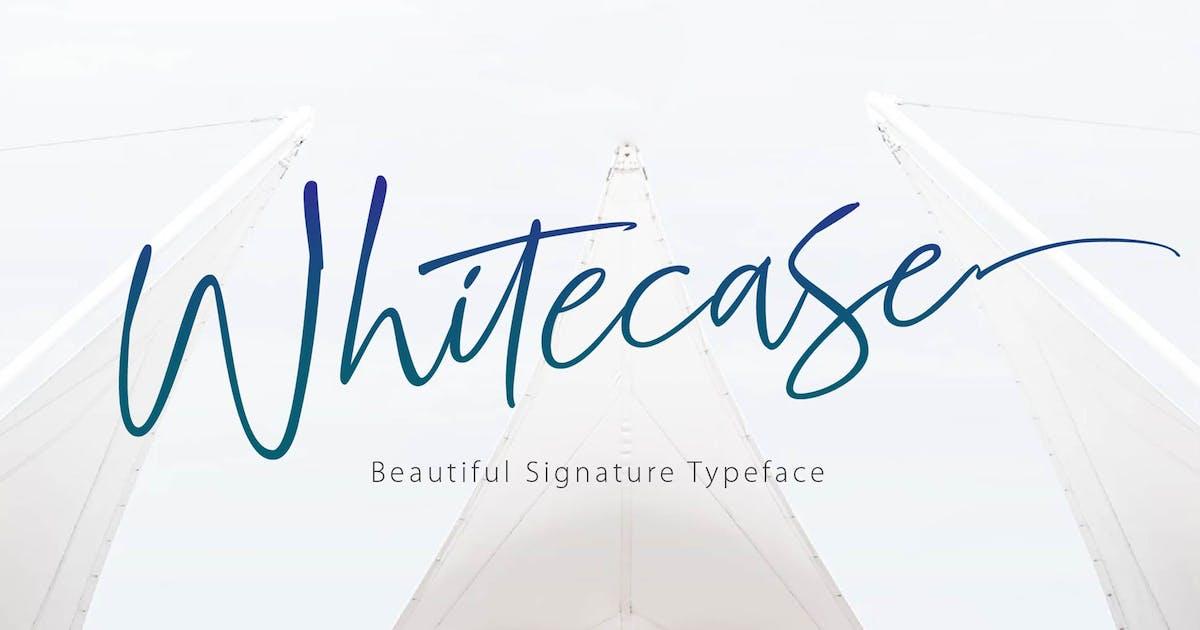 Download WHITECASE - Script Font by Olexstudio