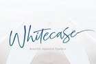 WHITECASE - Script Font