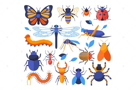 Insects Collection - Set of Flat Elements