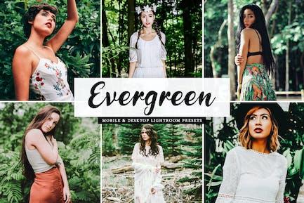 Evergreen Mobile & Desktop Lightroom Presets
