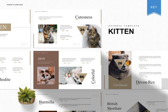 Thumbnail for Kitten | Keynote Template