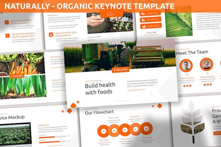 Естественно - Органический шаблон Keynote