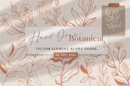 Botanical Line Art Illustration