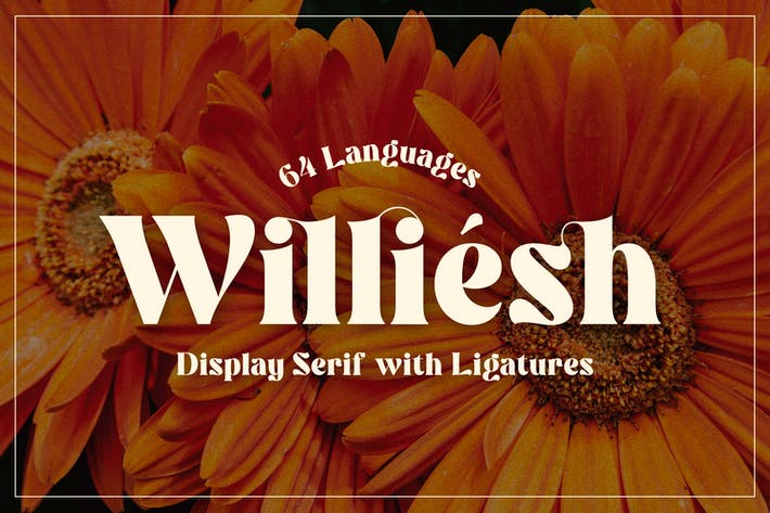 Williesh - Serif d'affichage unique