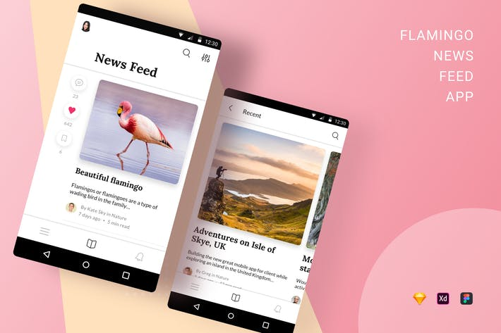 Thumbnail for Flamingo News Feed App