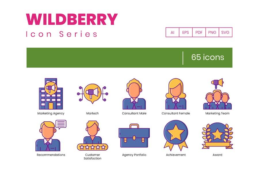 65 Icons für Marketingagenturen - Wildberry-Serie