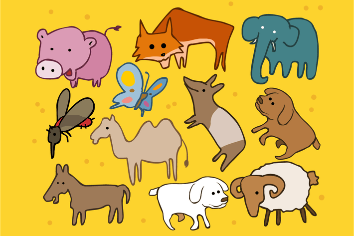 Thumbnail for Animal set flat