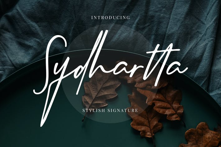Thumbnail for Sydhartta Stylish Signature