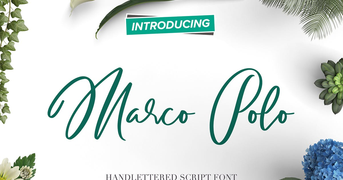 Download Marco Polo Script Font by ivanrosenberg