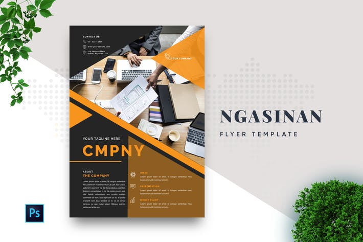 Thumbnail for Ngasinan Professional Business Flyer