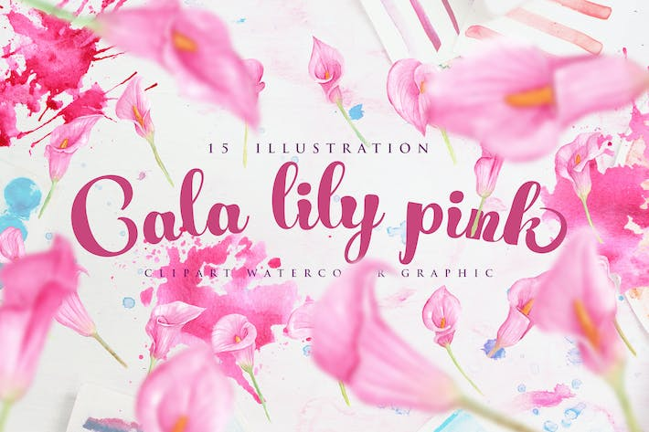 Thumbnail for 15 Watercolor Cala Lily Pink Flower Illustration