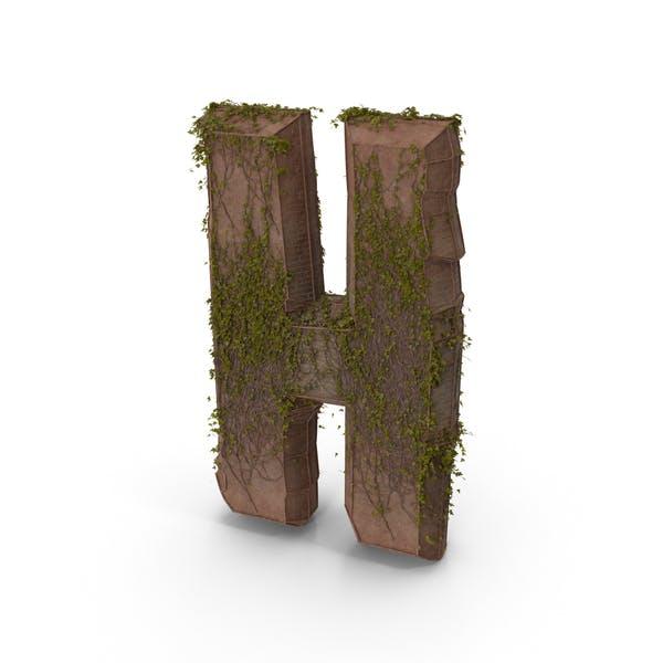Thumbnail for Letra piedra antigua con hiedra h