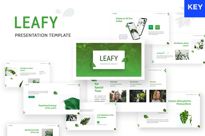 Cover Image For Leafy - Keynote Template