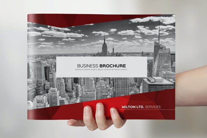 Thumbnail for Multipurpose Business Catalog / Brochure