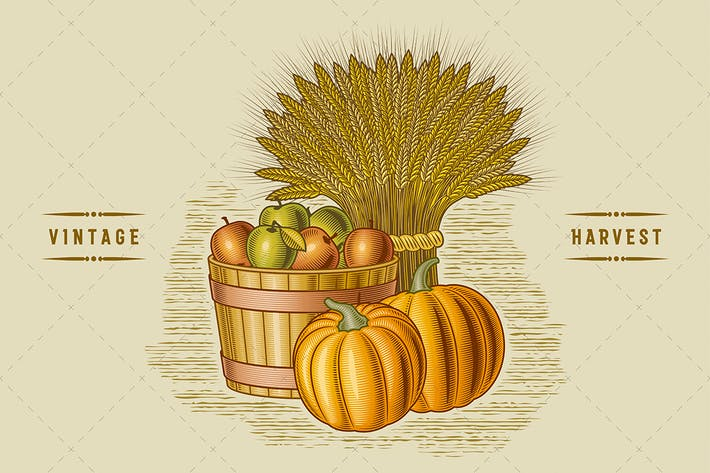 Thumbnail for Retro Harvest Still Life