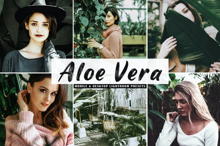 Thumbnail for Aloe Vera Mobile & Desktop Lightroom Presets