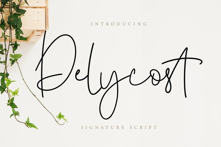 Thumbnail for Delycost Signature Style