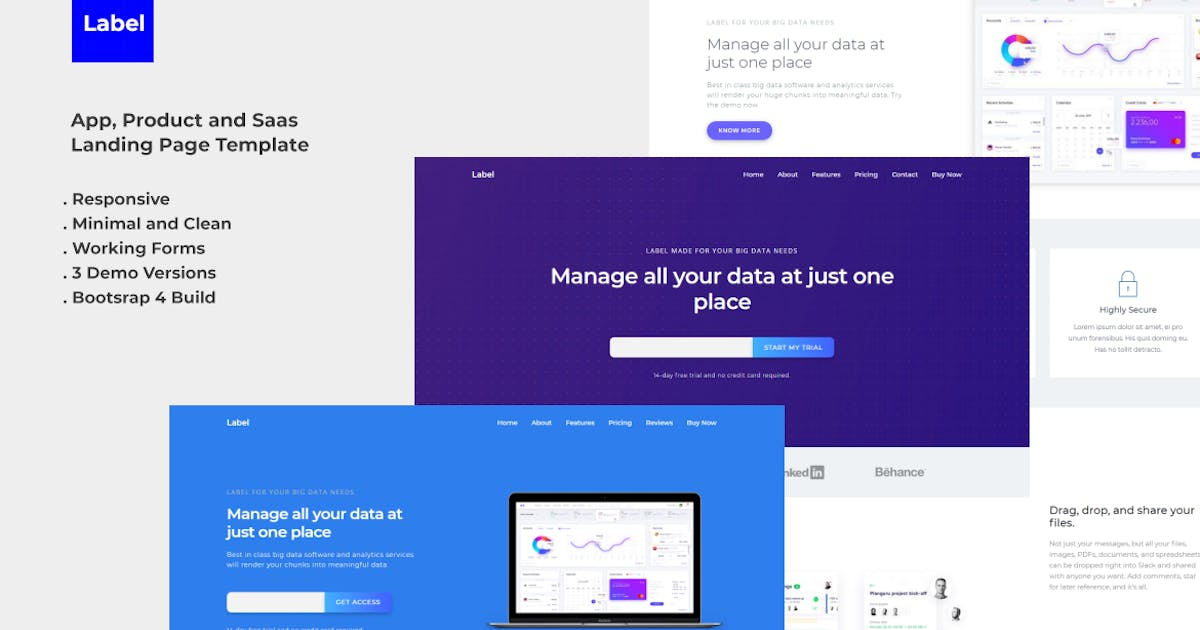 Download Label Software and App Landing Page Template by YDirectionThemes