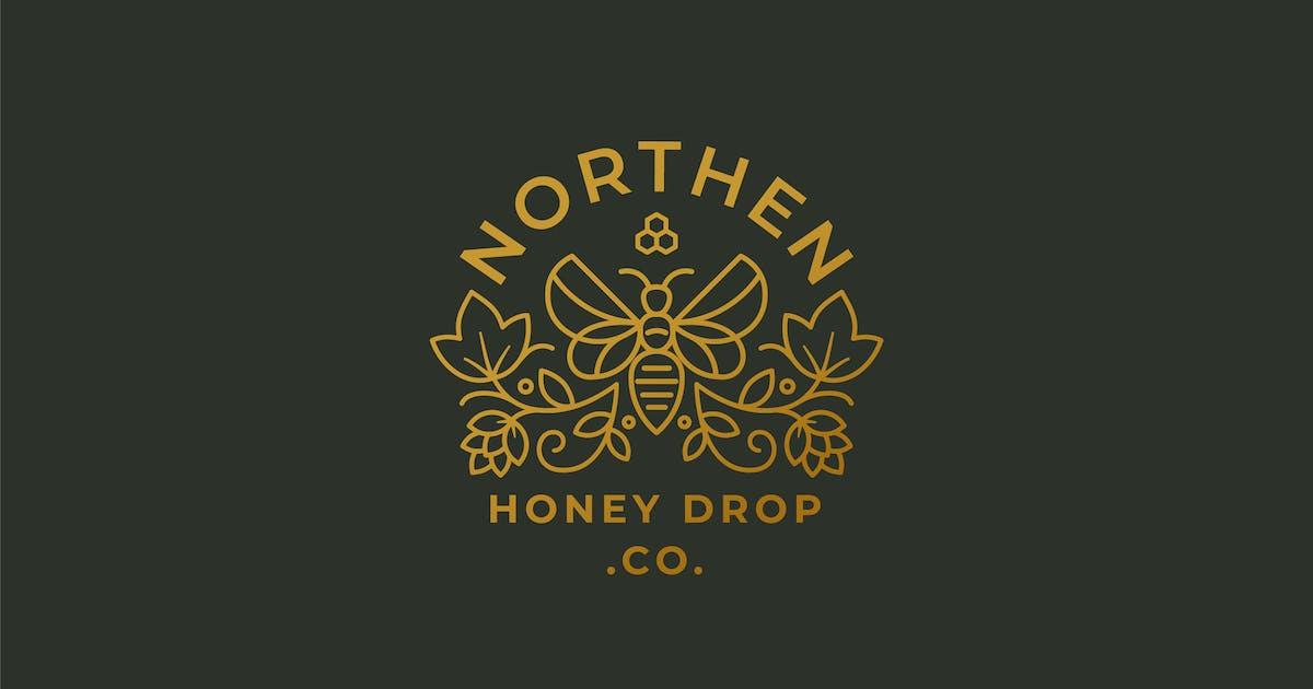 Download Honey Drop, Bee Farm, Beekeepers Logo Template by NEWFLIX