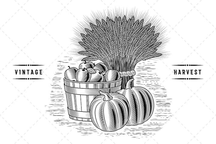 Thumbnail for Retro Harvest Still Life Black And White