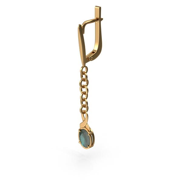 Thumbnail for Gold Earring