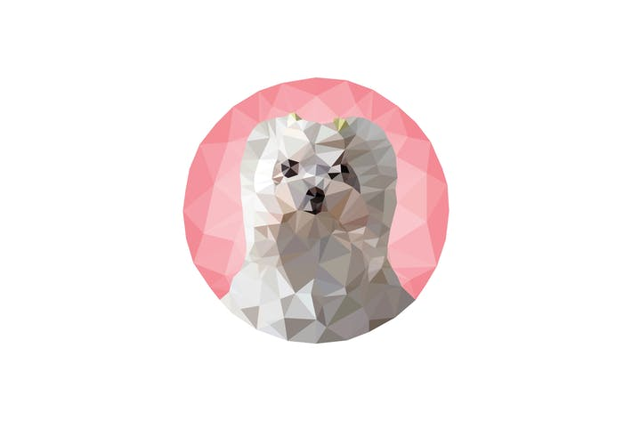 Thumbnail for Triangled puppy portrait