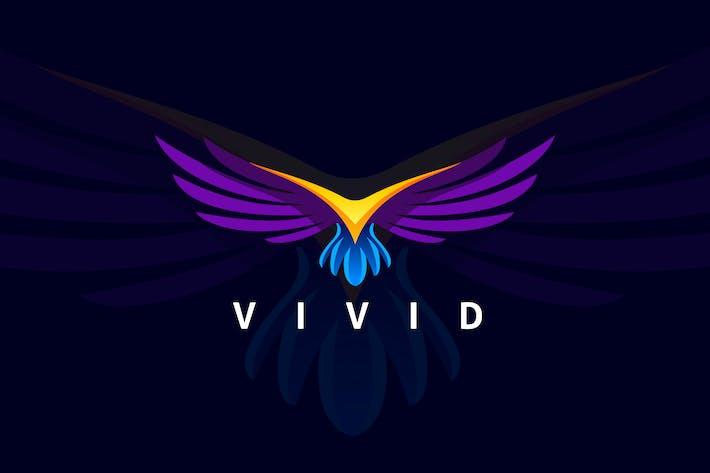 Thumbnail for Flying Modern Bird Logo