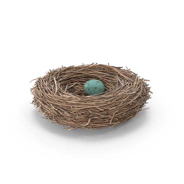 Cover Image for Bird Nest