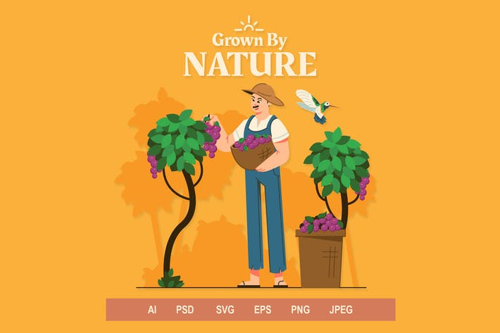 Thumbnail for Farmer - Illustrations
