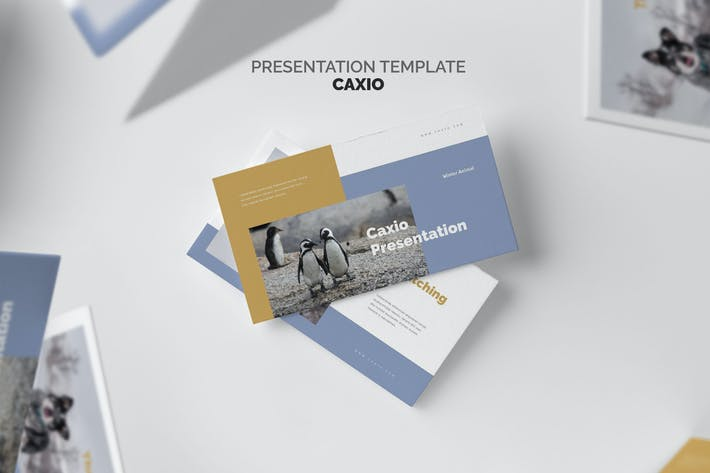 Thumbnail for Caxio: Заповедник Keynote природы
