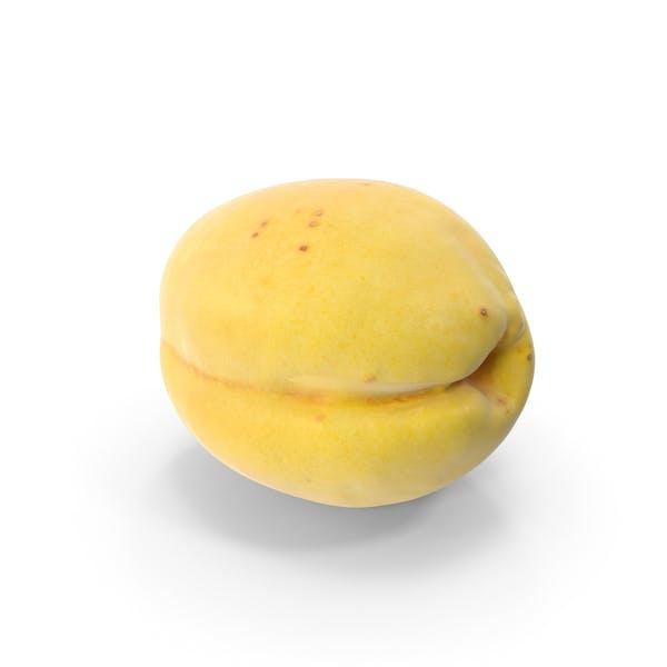 Thumbnail for Apricot