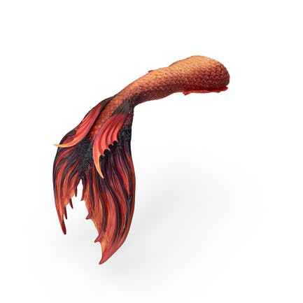 Meerjungfrauenschwanz