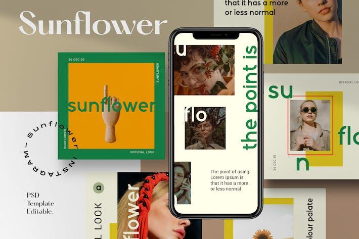 Sunflower 🌻 - Pack de médias sociaux 1
