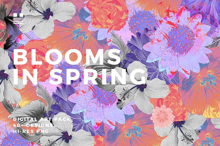 Thumbnail for Blooms in Spring