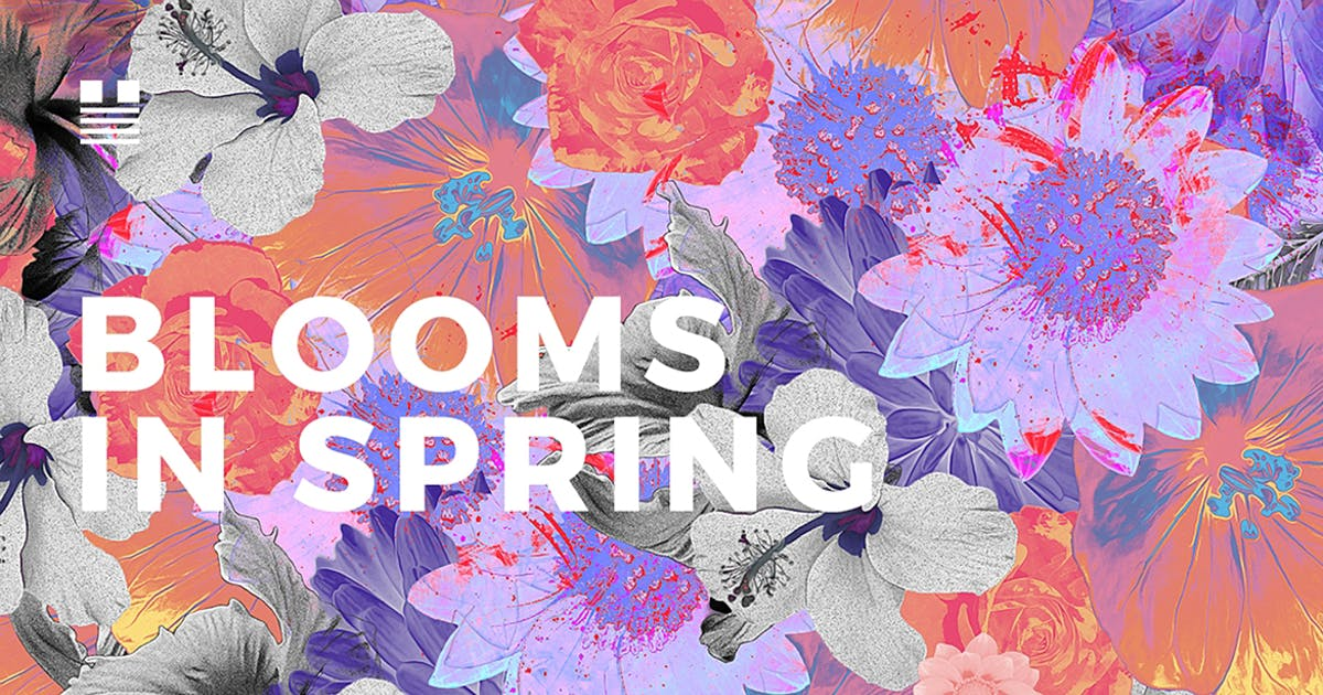 Download Blooms in Spring by hellomartco