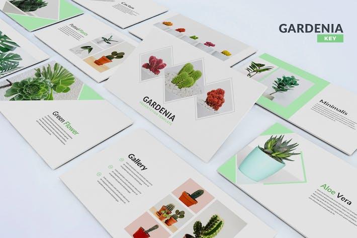 Thumbnail for Gardenia - Шаблон Keynote