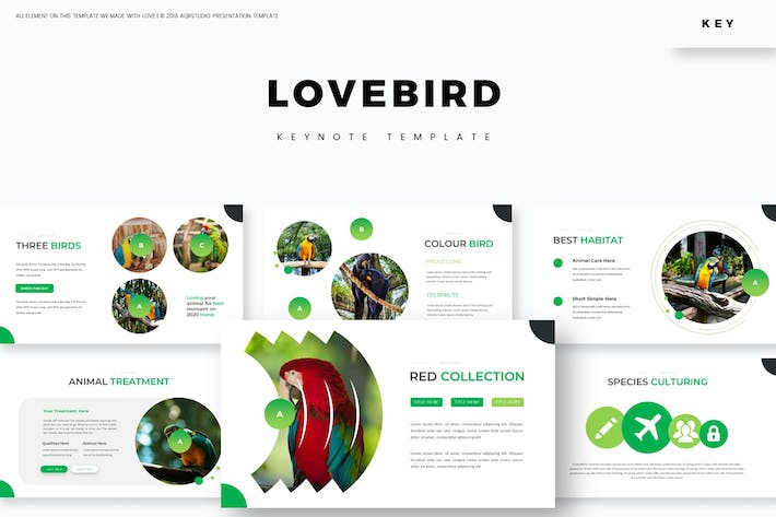 Love Bird - Keynote Template