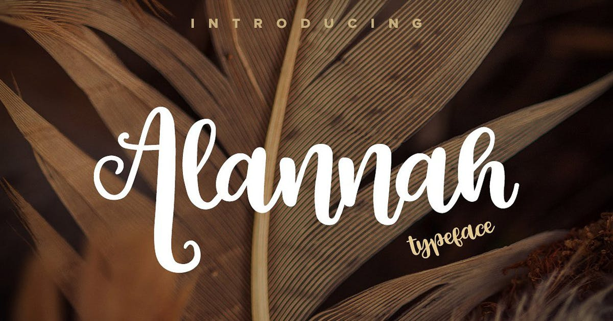 Download Alannah Script Font by pixelbuddha_graphic