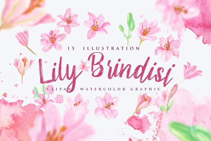 Thumbnail for 15 Watercolor Lily Brindisi Flower Illustration