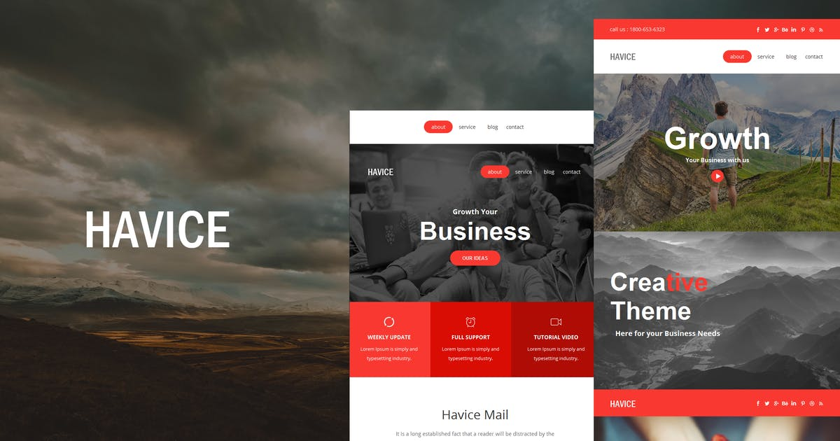 Download Havice Mail - Responsive E-mail Template by williamdavidoff