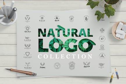 Modern Natural Logo Collection