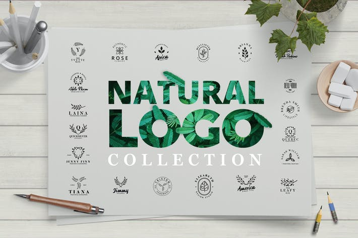 Thumbnail for Modern Natural Logo Collection