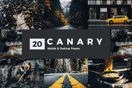 20 Canary Yellow Lightroom Presets and LUTs