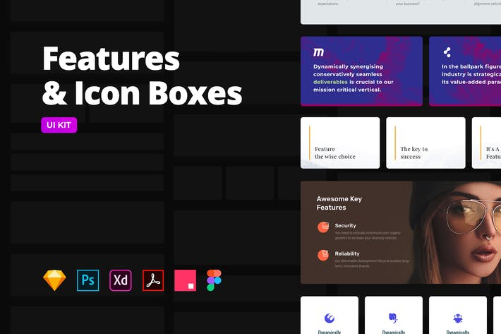 Thumbnail for Features & Icon Boxen — Multi-Format UI KIT