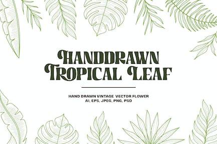 Handdrawn Tropical Flower